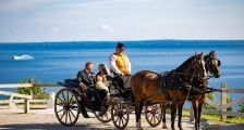 A newly married couple in a horse-drawn carriage